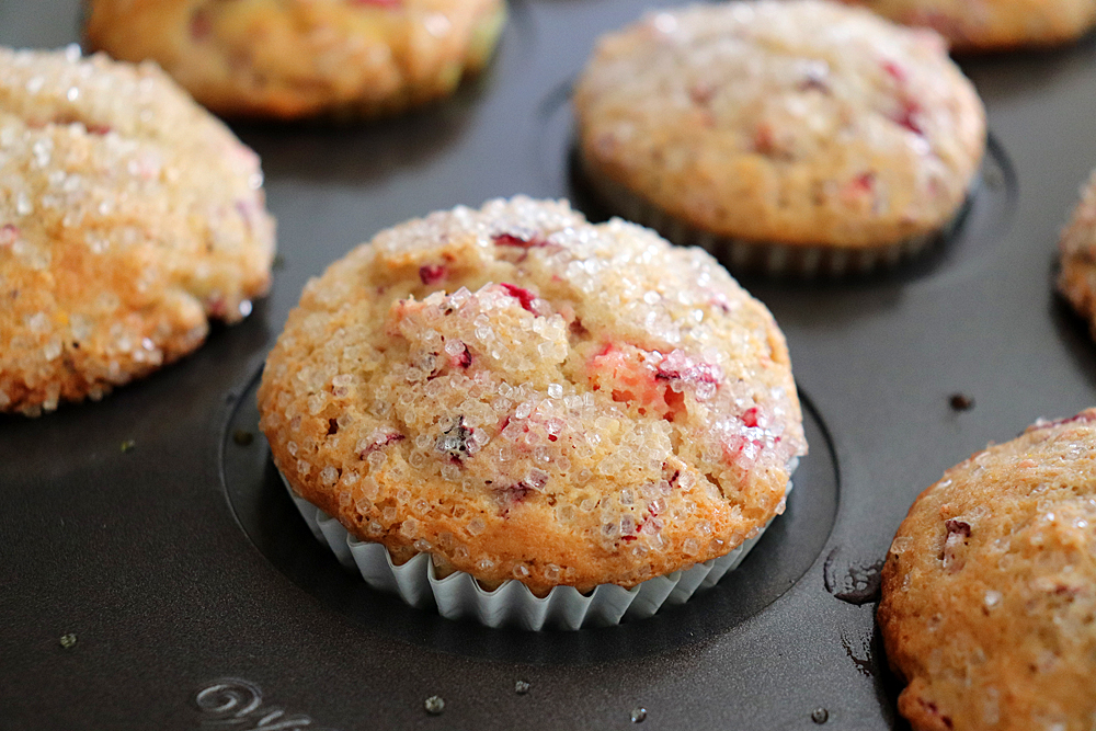Baked cranberry orange muffins in pan