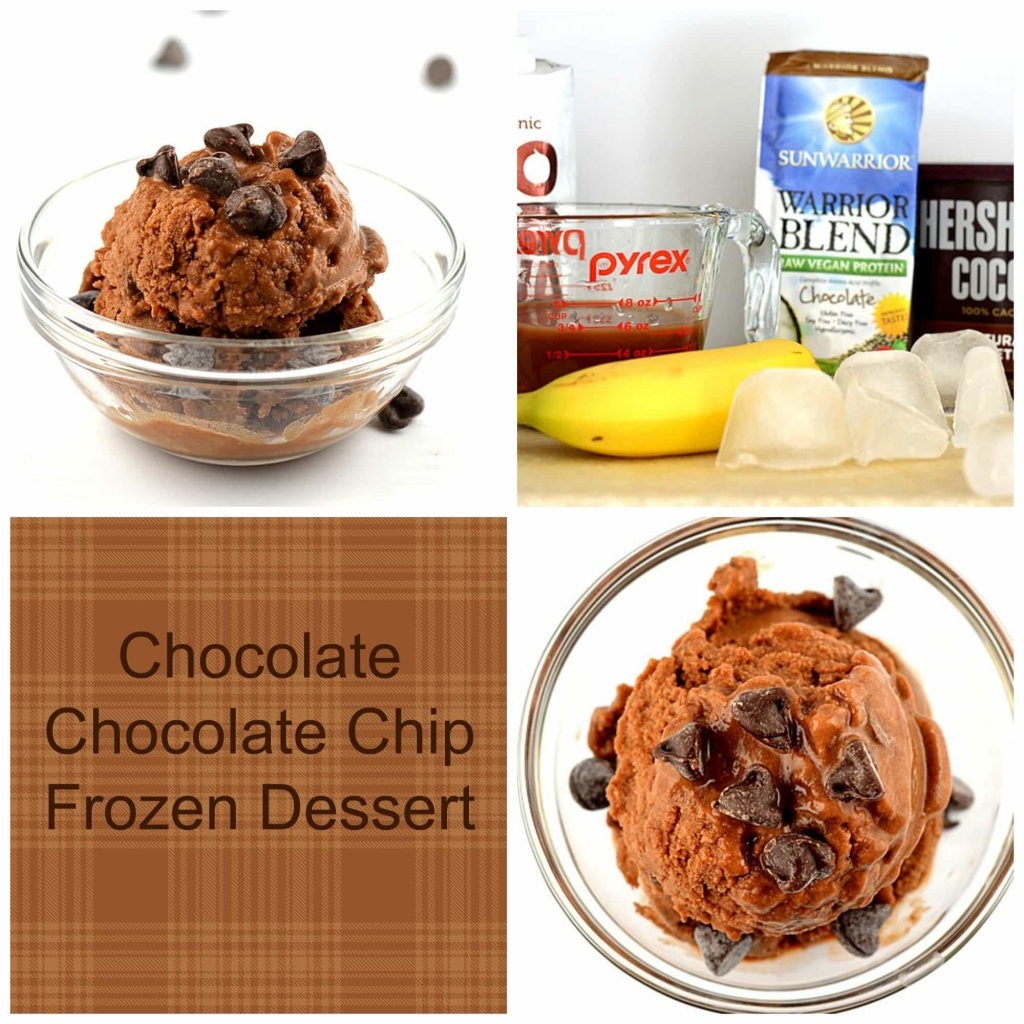 Chocolate Chip Frozen Dessert