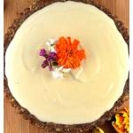 Lemon Cashew Cream Tart (Raw, Vegan)