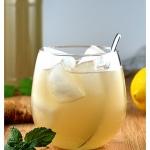 Homemade Ginger Ale {Vegan}