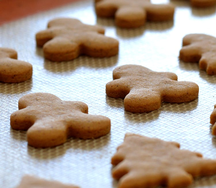 Vegan Gingerbread Cookies with Royal Icing - TheVegLife