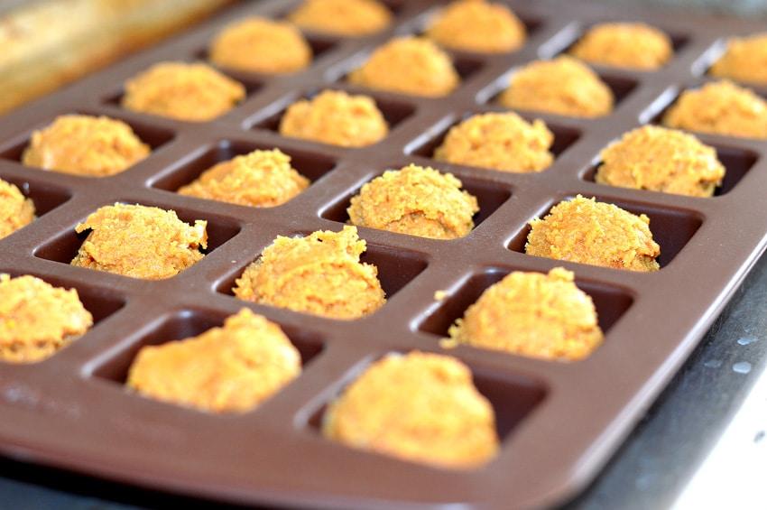 Soy Nut Butter Quinoa Blondie Bites