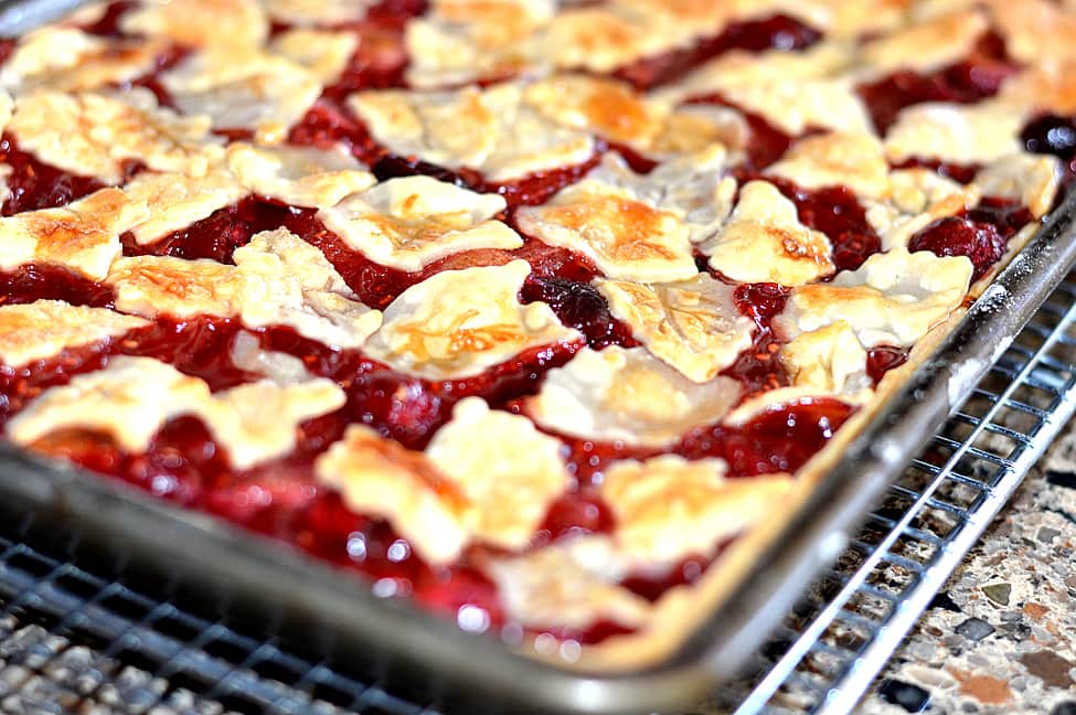 Vegan Apple Cranberry Slab Pie - TheVegLife