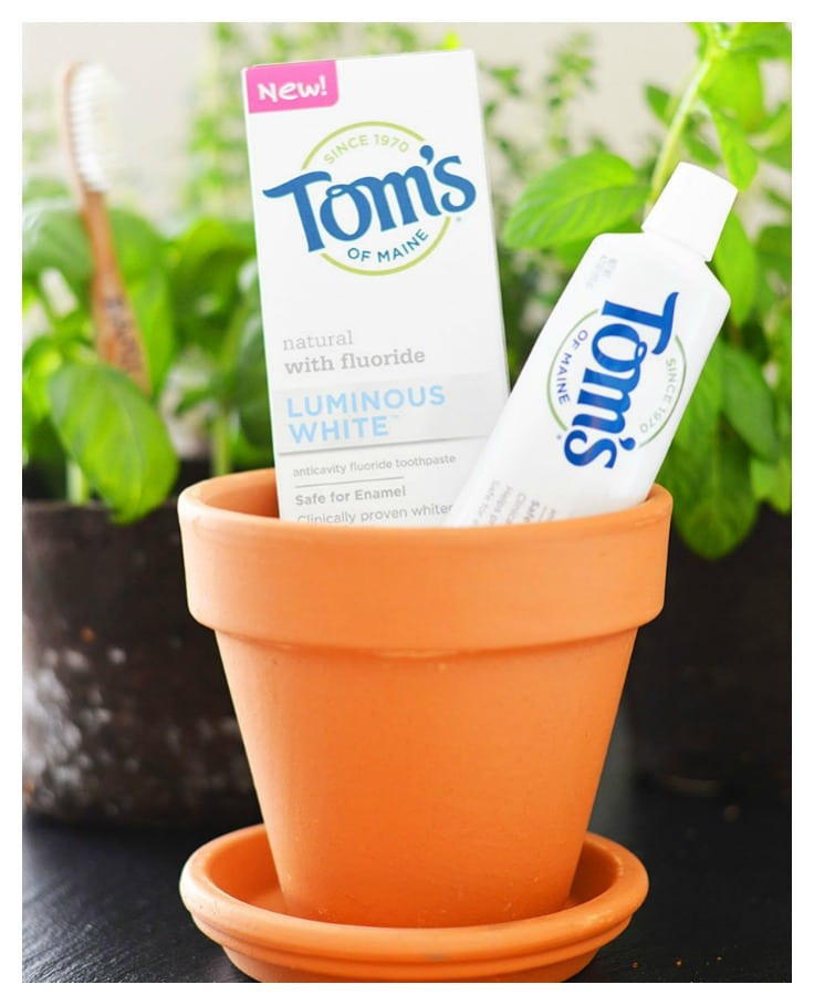 REVIEW OF TOM'S OF MAINE LUMINOUS WHITE TOOTHPASTE