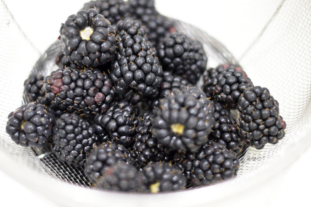 Just washed blackberries in a strainer