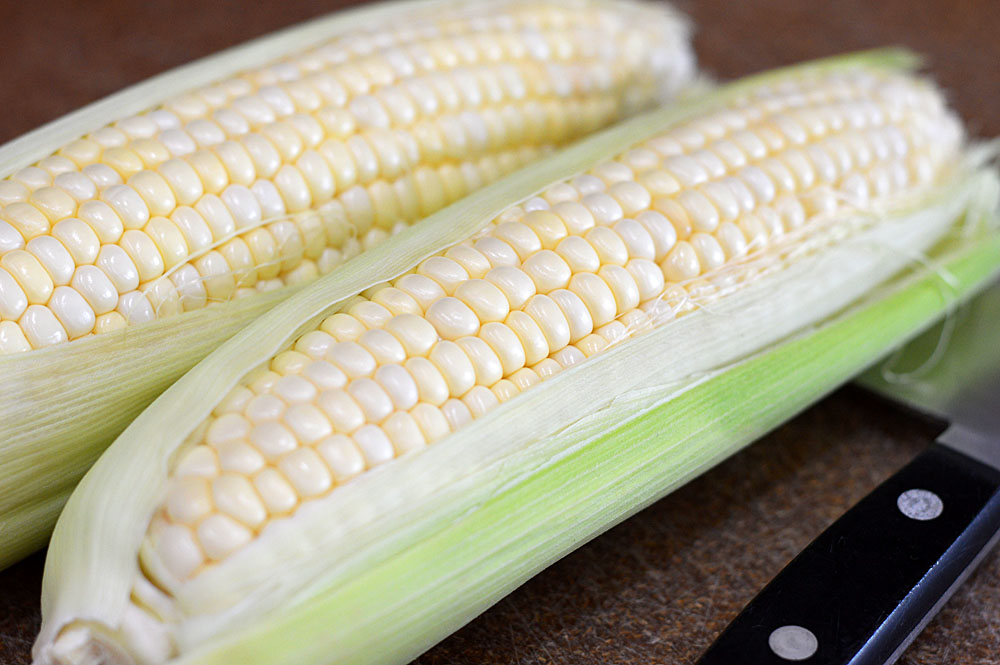 Two ears of corn on the cob